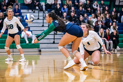 Endicott College Women's Volleyball takes on the Salve Regina Seahawks on November 7th, 2019.