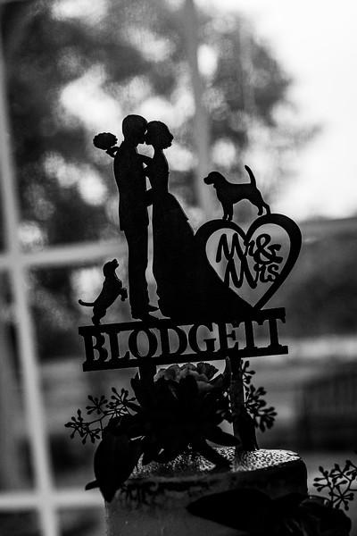 20191014_ngp_blodgett_wedding-423