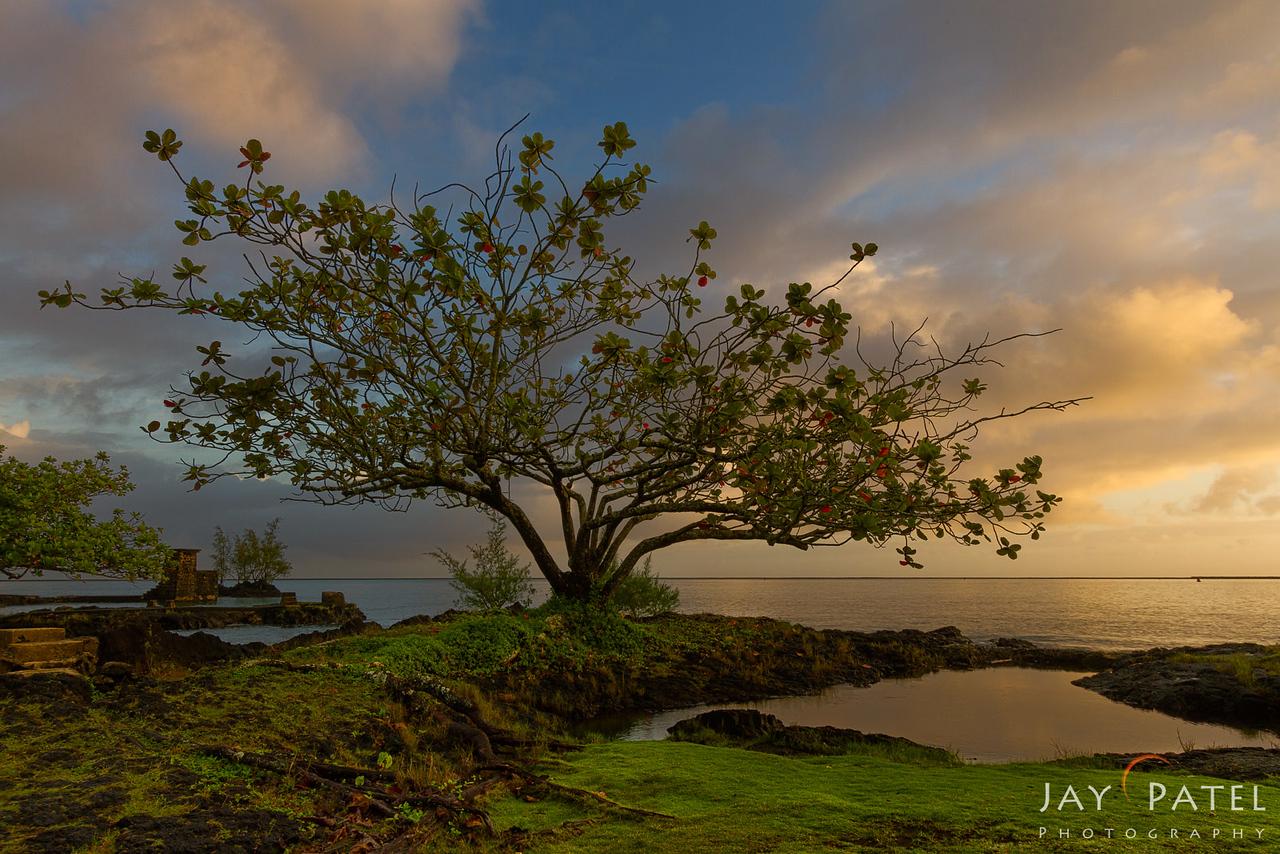 Hilo, Big Island, Hawaii (HI), USA