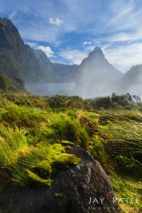 Milford Sound, Fiordlands National Park, New Zealand