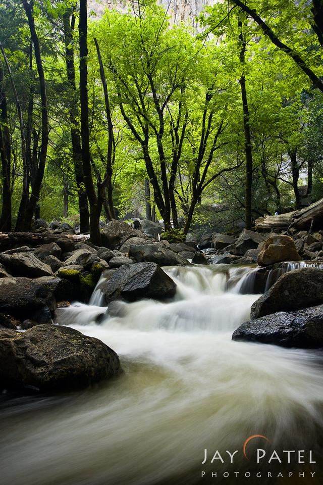 Yosemite National Park, California (CA), USA