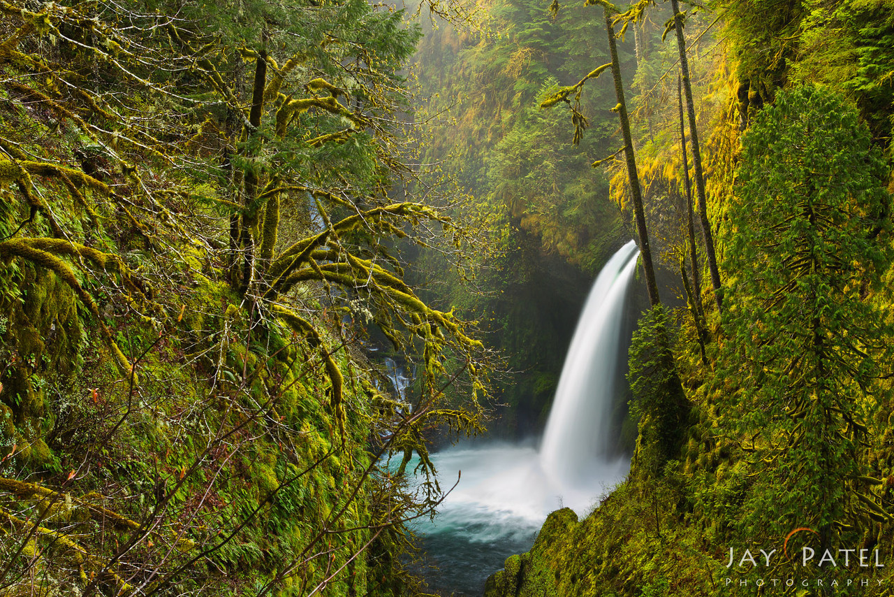Metlako Falls, Columbia River Gorge, Oregon (OR), USA