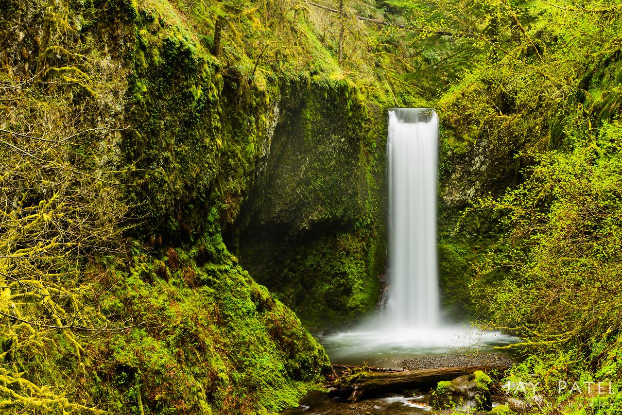 Columbia River Gorge, Oregon (OR), USA
