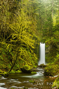 Columbia River Gorge, Oregon (OR), USA
