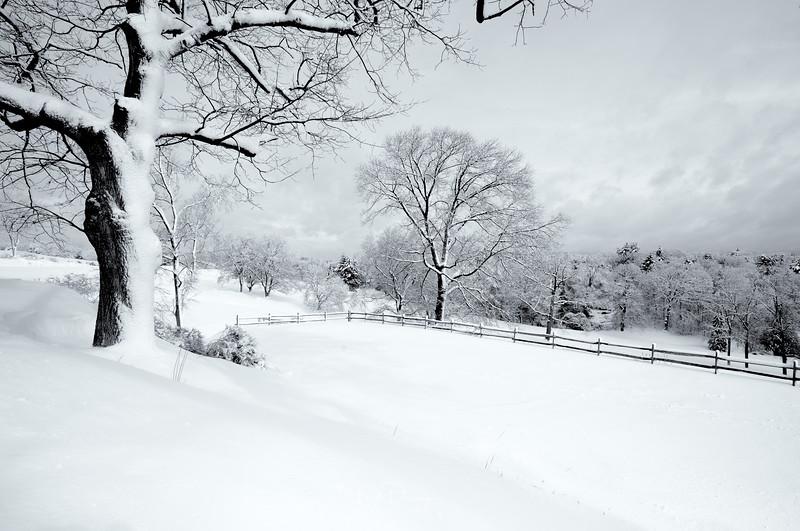 Winter in New England II