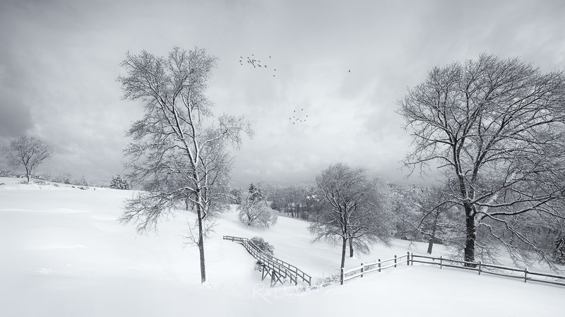 Winter in New England III