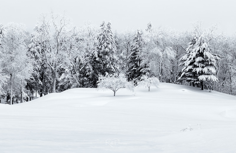 Winter in New England VI