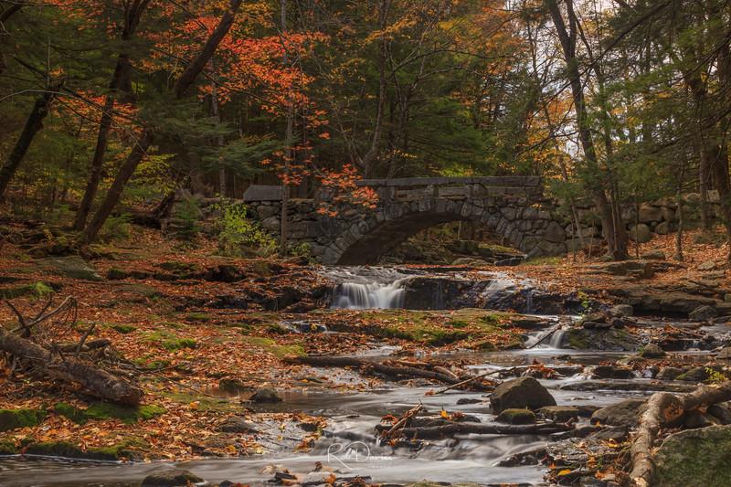 Fall in Hobbitland