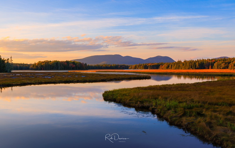 Bass Harbor Marsh