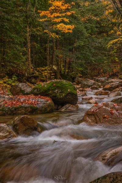 Cascade in New Hampshire