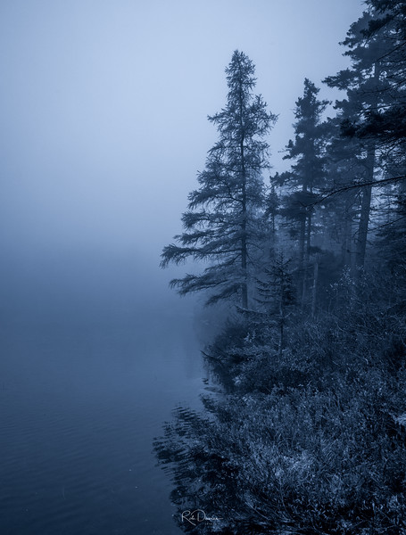By Lonesome Lake