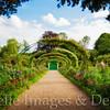 Morning View, Monet's Home & Garden