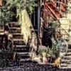 Hidden Courtyard II