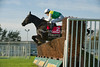 Albertas Run (Ire), AP McCoy up, clears the second last in the Betfred Monet's Garden Old Roan Steeple Chase (A Limited Handicap) (Class1) (Grade2)