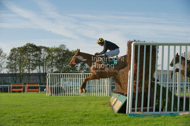 Treacle, MP Walsh up, in the Betfred 10 Best Odds in Shops Veterans' Handicap Steeple Chase