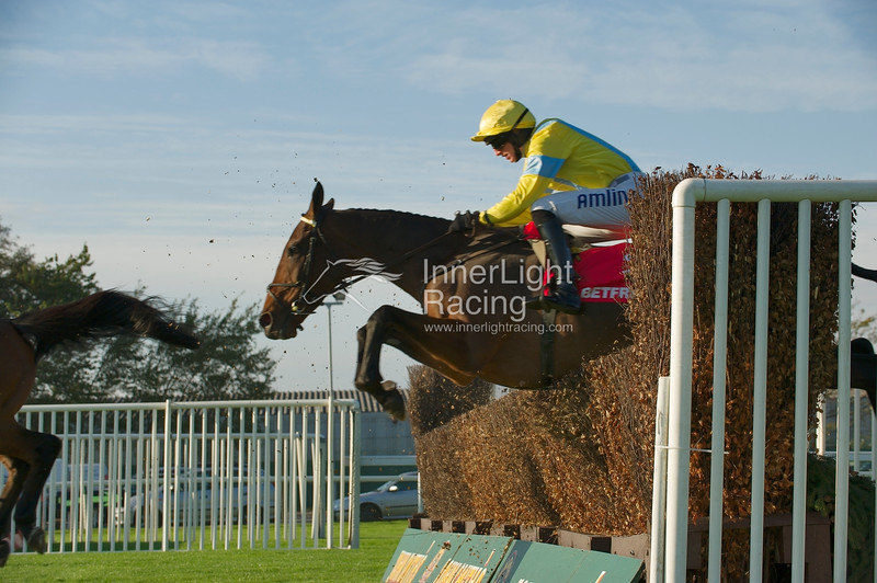 Pure Faith (Ire), Tom O'Brien up, clears the second last in the Betfred Monet's Garden Old Roan Steeple Chase (A Limited Handicap) (Class1) (Grade2)