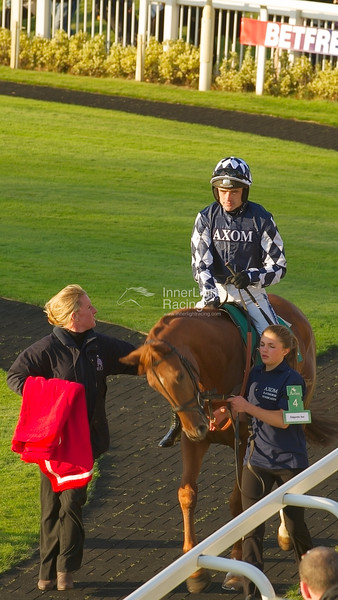 Edgardo Sol, Ruby Walsh up, parade ring. Betfred Bundles Novices' Limited Handicap Steeple Chase (Class 3)