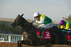 Albertas Run (Ire), (winner) AP McCoy up, & Master Minded (Fr), (third) Ruby Wash up, side by side in The Betfred Monet's Garden Old Roan Steeple Chase (A Limited Handicap) (Class1) (Grade2)