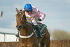 Aintree Grand National Meeting: Thursday 4th April 2013: The Betfred Manifesto Novices' Steeple Chase (Class 1) (Grade 1)