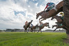Aintree Summer Racing Friday 13th June 2014