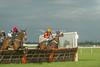 Aintree Summer Racing Friday 13th June 2014