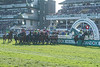 Randox Health Grand National Handicap Chase (Grade 3) (Class 1)