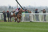 Zut Media Red Rum Handicap Chase (Grade 3) (Class 1)