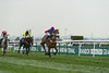 Weatherbys Racing Bank Standard Open NH Flat Race (Grade 2)