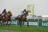 Weatherbys Racing Bank Standard Open NH Flat Race (Grade 2)