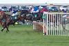 Aintree Racecourse Countryside Day