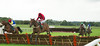 Quinsman, (Winner) Robert Thornton, heads Clarion Call, Paul Moloney at the last  in the Betfair Supports Grassroots Racing at Bangor Maiden Hurdle Race (Class 5) 2m 4F