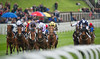 Chester Races May Festival Day 1 Stan James Chester Cup Day 9th May 2012. StellarGroup Handicap Stakes.