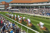 The Boodles May Festival 2017, Cup Day Wednesday 10th May