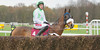 Betfair Chase Day, Haydock Park 24th November 2012