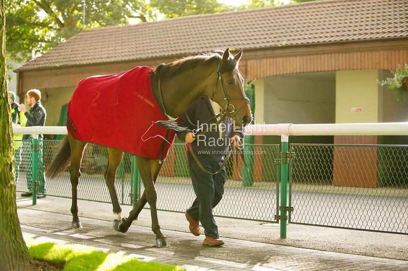 Haydock Park Lester Piggott Day 29/09/2012 The Nationwide Platforms Handicap Stakes (Class 2) Cosmic Sun, Richard Fahey