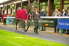 """Haydock Park Lester Piggott Day 29/09/2012 The E.B.F. Stainless Wire """"Reprocolor"""" Fillies Handicap Stakes (Class 3) Bedazzled, James Fanshaw"""