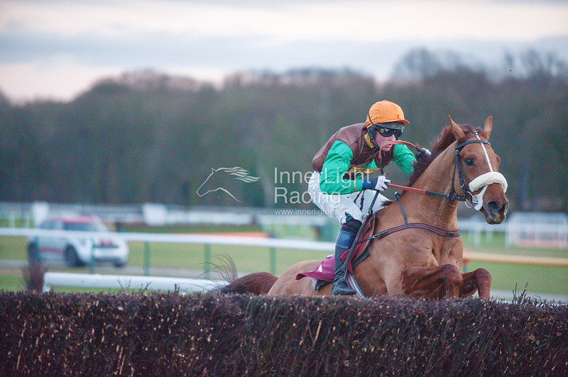Grand National Trial Day 16th February 2013 Haydock Park