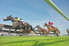 Haydock Park Lancashire Oaks & Old Newton Cup Day; The bet 365 Handicap Stakes (Class 2)