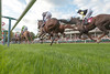 Haydock Park Betfair Pride of Racing Awards Raceday