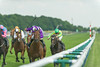 Haydock Park BetVictor Sandy Lane Stakes and Timeform Jury Stakes Raceday 8th June 2013