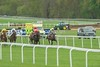 Haydock Park; Pertemps Swinton Hurdle Day 11/05/2013