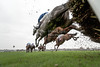 Haydock Park Betfair Chase Festival: Friday 21st November 2014
