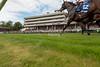 Haydock Park Sprint Cup Day 2014
