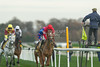 Betfair Chase Festival; Haydock Park, 20th/21st November 2015