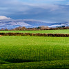 Snow on Croghan Mountain, North Wexford, Ireland.