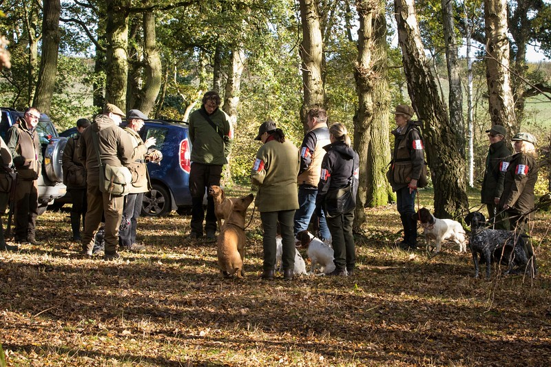 Wrencourt Introduction To Field Trialling Training Day Card 1-3