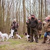 WGDS AV Spaniel Open Working Test March 18th 2017-5