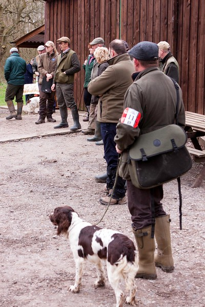 AV Spaniel Novice 18th March 2017