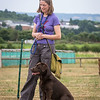 Gundog Club Level 1 & 2 Asessment Helen Phillips-17