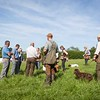 Welsh and English Counties Spaniel Club Training Day Poolgreen Gundogs-10